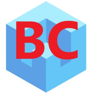 BC ERP